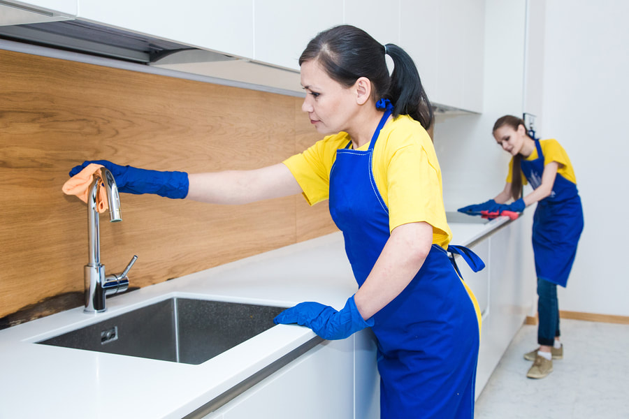 professional cleaner cleaning kitchen