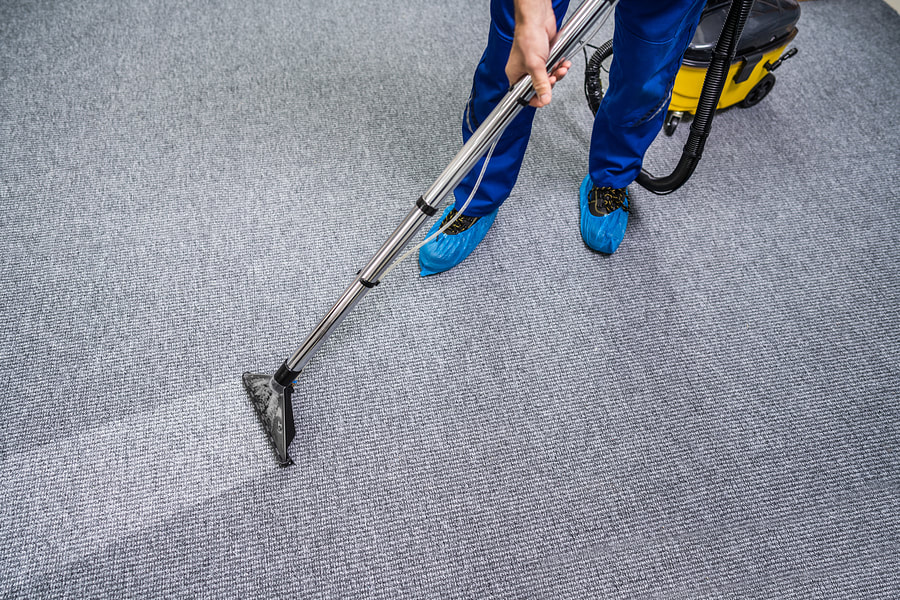 professional cleaner cleaning carpet